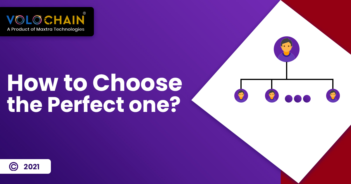 MLM Software Plans: How to Choose the Perfect One?